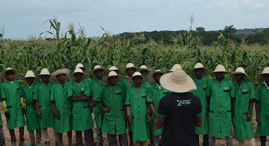 Xtreme Returns farm workers